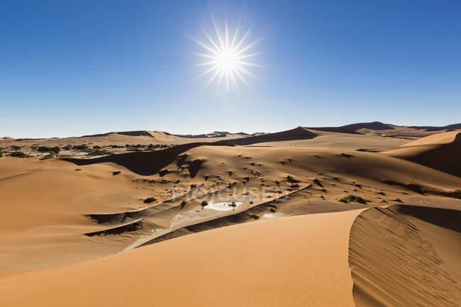 Африка, Намибия, пустыня Намиб, Национальный Парк Namib-Naukluft, вид в пустыне дюны — стоковое фото