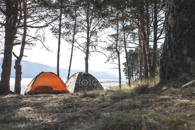 Bulgária, Montanhas Rhodope, duas tendas em pé, lado a lado, na margem do reservatório Dospat — Fotografia de Stock