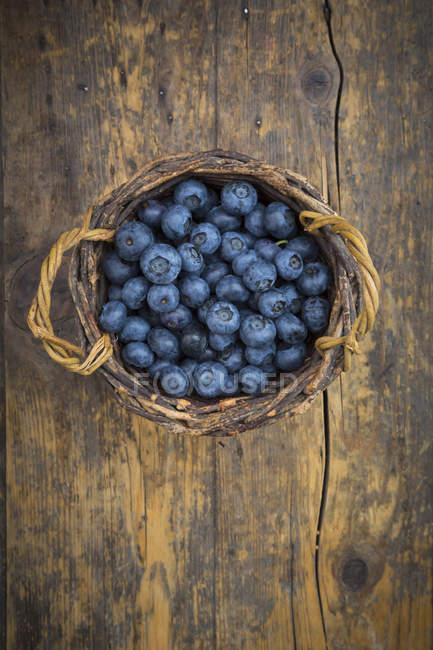 Cestino di vimini di mirtilli freschi raccolti — Foto stock