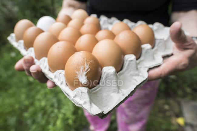 Femme tenant des œufs frais en carton avec plume — Photo de stock