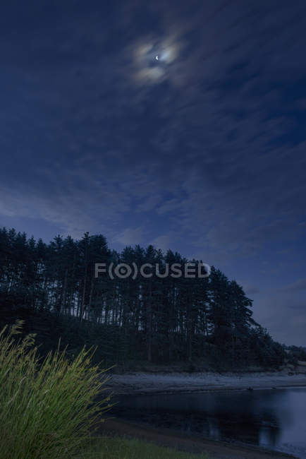 Bulgaria, Rhodope Mountains, forest at shore of Dospat Reservoir by moonlight at night — Stock Photo