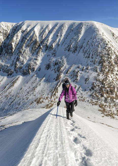 Regno Unito, Scozia, Ben Nevis, Carn Mor Dearg, alpinista senior femmina a piedi le montagne nevose — Foto stock