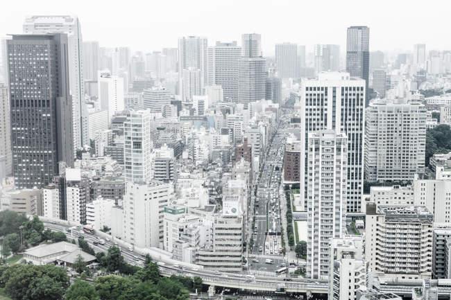 Paysage avec pont d'autoroute à Tokyo, Japon — Photo de stock