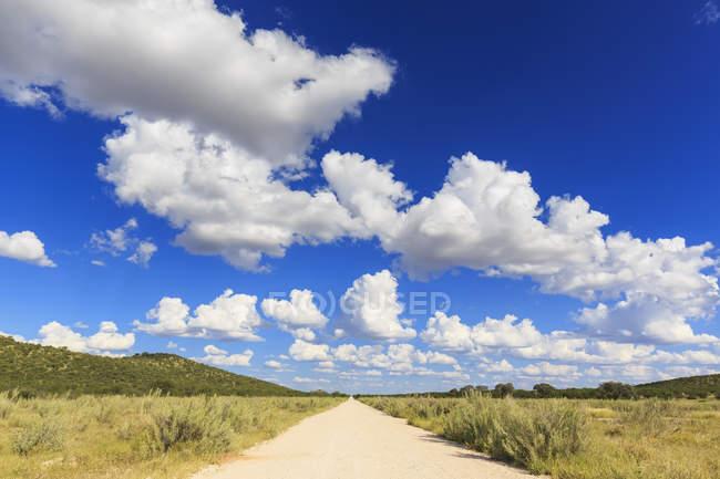 Namibia, Etosha National Park, view to empty gravel road — Stock Photo