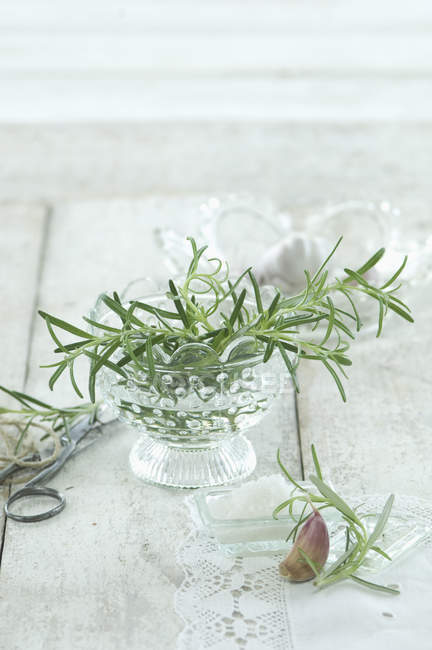 Fresh rosemary, sea salt and garlic clove — Stock Photo