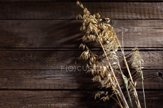 Pico maduro de aveia no fundo de madeira — Fotografia de Stock