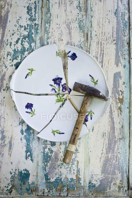 Placa, design floral, genciana, quebrado, martelo sobre a superfície de madeira — Fotografia de Stock