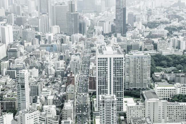 Вид на міський пейзаж Токіо в денний час, Японія — стокове фото