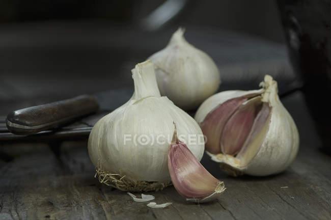 Луковицы чеснока и гвоздики — стоковое фото