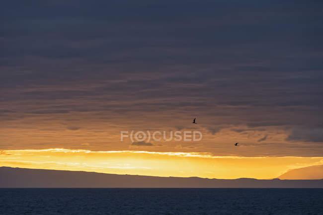 Pazifischer Ozean, Galapagos-Inseln, Sonnenuntergang über der Insel Antiago — Stockfoto