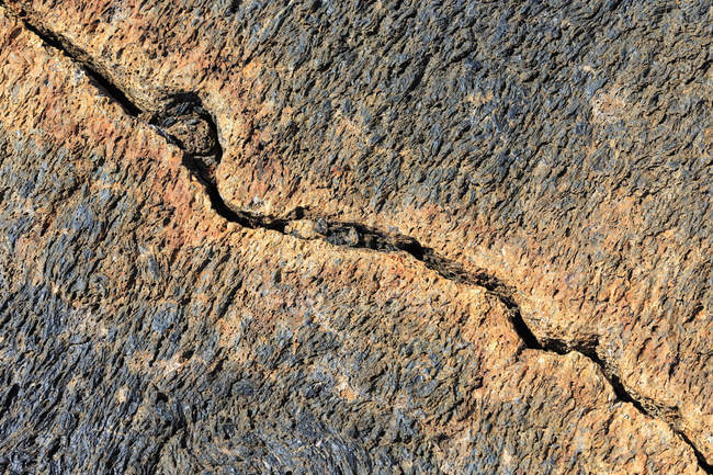 Ecuador, Galapagos Islands, Isabela, crack in lava field — Stock Photo