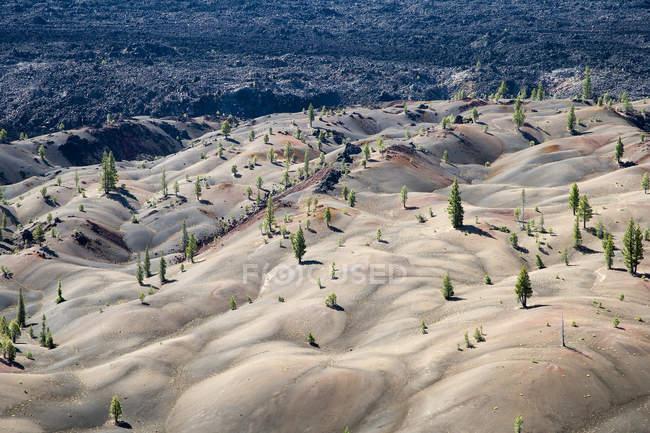 USA, California, Lassen Volcanic National Park, Cinder Cone Nature Trail — Stock Photo