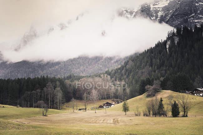 Alemanha, Baviera, Ramsau, paisagem rural com campo e árvores em encostas — Fotografia de Stock