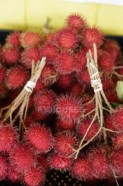 Racimos de frutos de rambután fresco - foto de stock