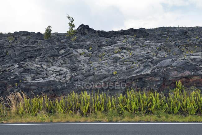 США, Гаваї, великий острів, Національний парк вулканів ланцюга з кратерів дорогу перед рослини лавовим поле — стокове фото