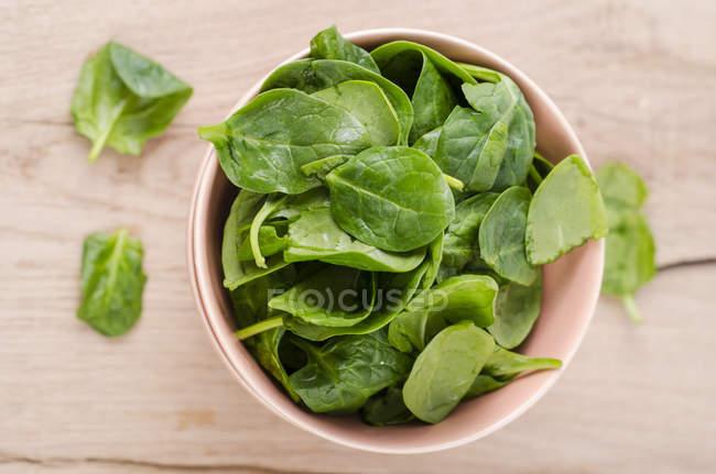 Чашу шпинат свіжий листя — стокове фото
