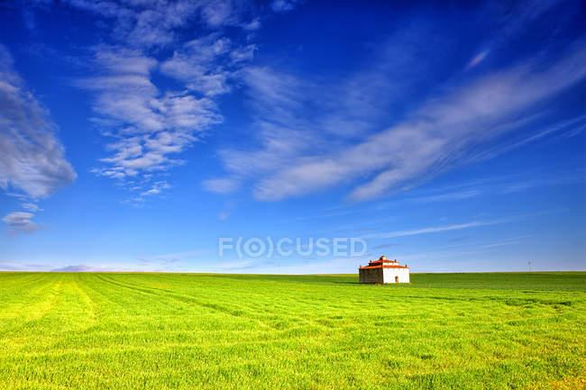 España, Provincia de Zamora, edificio en medio de un campo de cultivo - foto de stock