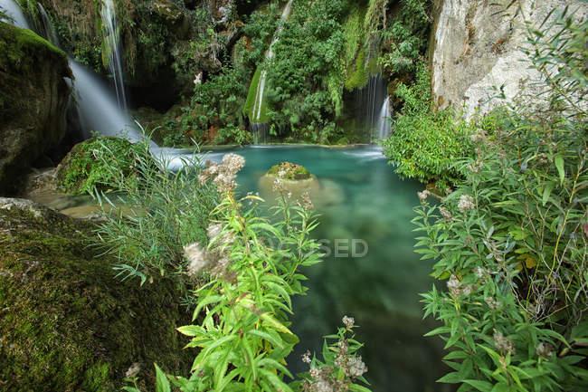 Испания, природный парк Урбаса-и-Андия, река Уредерра, протекающая между деревьями — стоковое фото