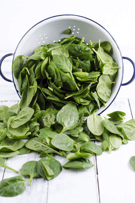 Close up of Colander and fresh spinach leaves — Stock Photo