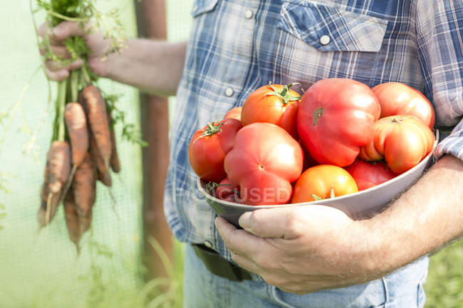 Farmer holding bowl of organic tomatoes — Stock Photo