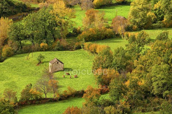 Испания, провинция Уэска, Линас-де-Брото, сельский ландшафт — стоковое фото