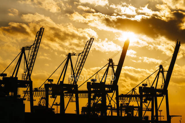 Germany, Hamburg, container cranes at sunset — Stock Photo