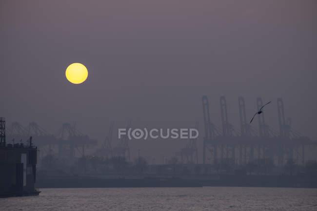 Vista del puerto de contenedores al atardecer, Hamburgo, Alemania - foto de stock