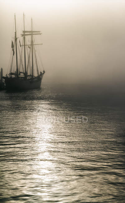 Germany, Hamburg, sailing ship in fog — Stock Photo