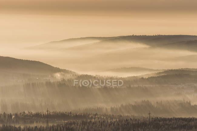 Allemagne, Saxe-Anhalt, Parc National du Harz, rayons du soleil au coucher du soleil en hiver — Photo de stock