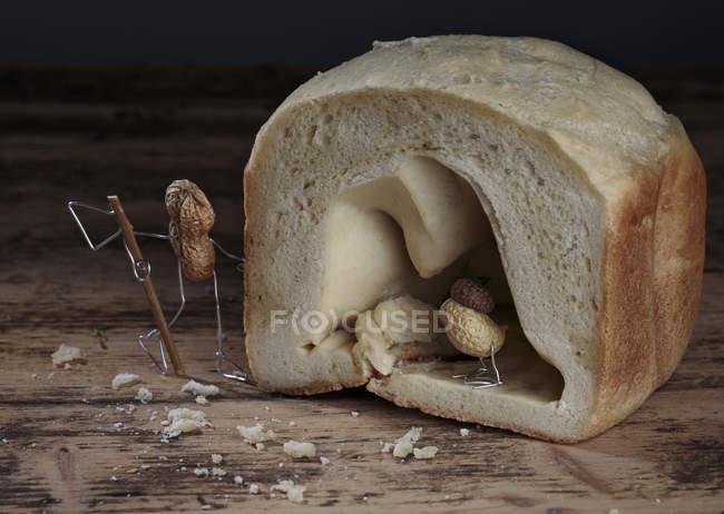 Peanut bird hiding in bread cave, hunter waiting outside — Stock Photo
