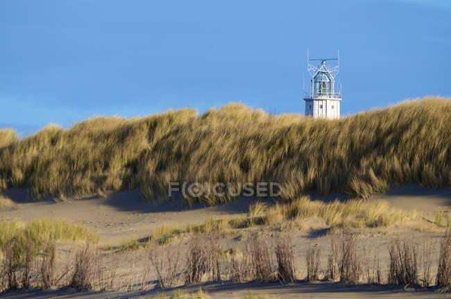 Місті Ouddorp маяка на узбережжі заростають травою — стокове фото