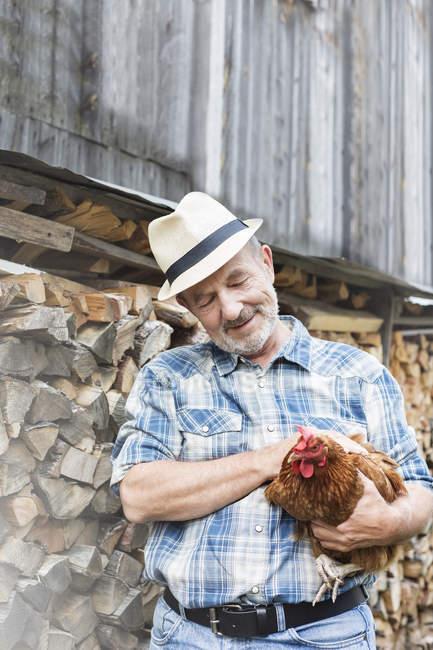 Усміхаючись фермер на органічні ферми, проведення курячі — стокове фото