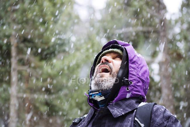 Бородатый мужчина смотрит в лес во время снега — стоковое фото