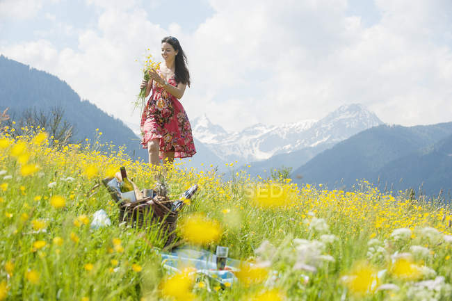 Young woman picking flowers on alpine meadow — Stock Photo