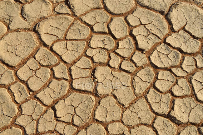 Africa, Namibia, Sossusvlei, Dead Vlei, broken surface of a salt and clay pan — Stock Photo