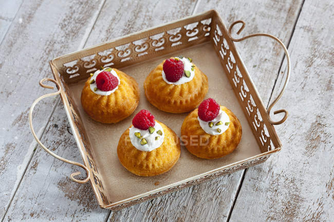 Mini Gugelhupf cakes — Stock Photo