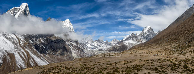 Nepal, Khumbu, Everest region, Dughla, yaks with loads, Lobuche peak, Arakam Tse peak, Cholatse peak — Stock Photo
