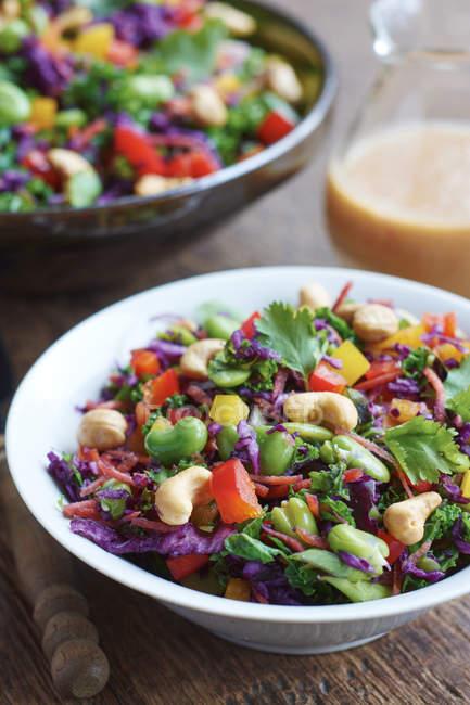 Salade de chou asiatique avec du chou rouge, chou frisé, haricots de fava, noix de cajou et coriandre — Photo de stock