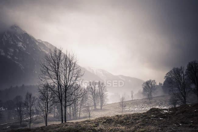 Германия, Бавария, Рамзау, сельский пейзаж в дневное время — стоковое фото