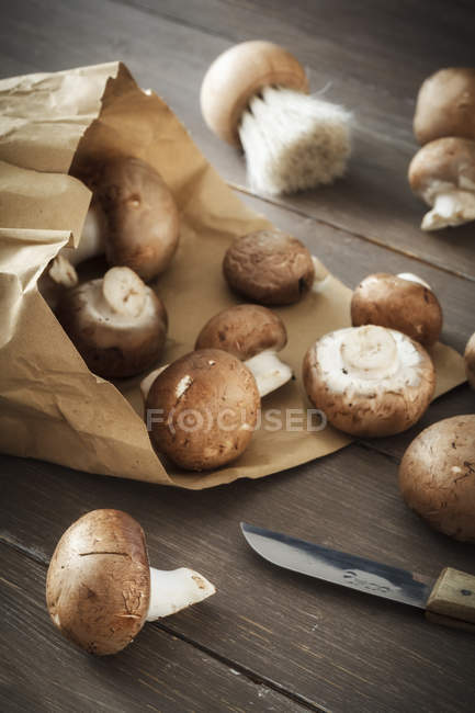 Fresh mushrooms with brown paper — Stock Photo