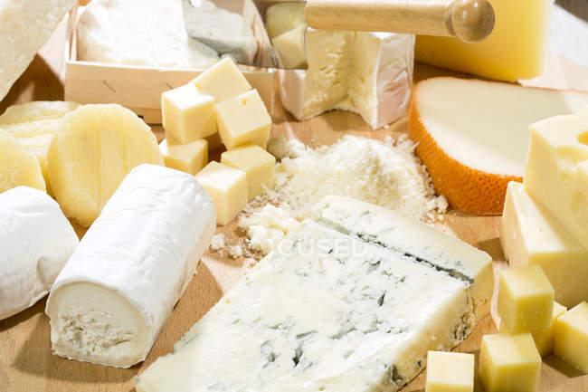 Tabla de quesos con diferentes tipos de queso - foto de stock