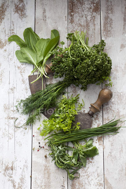 Herbes de la sauce verte de Francfort et mezzaluna — Photo de stock