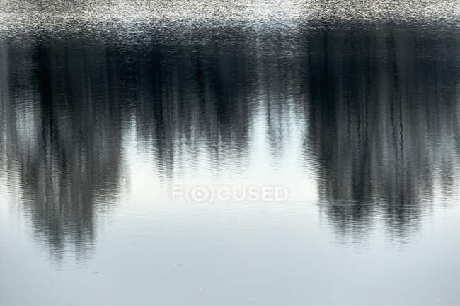 View of Water reflection on a lake — Stock Photo