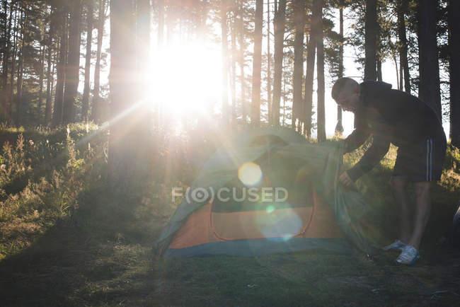 Bulgaria, uomo che fissa tenda nella foresta — Foto stock