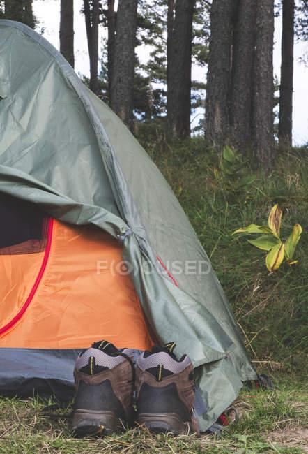 Bulgarie, paire de chaussures de randonnée devant une tente — Photo de stock