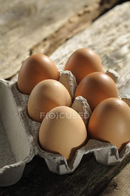Яйце коробку з шести коричневі яйця по дереву — стокове фото
