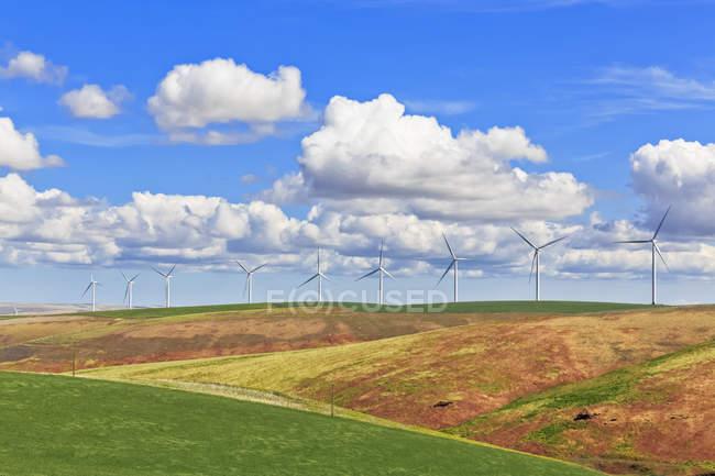 США, Айдахо, Palouse, ветровых турбин на хлебных полях — стоковое фото