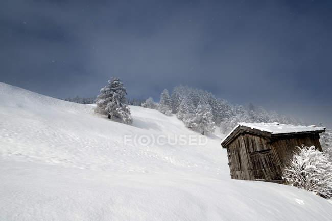 Австрия, Тироль, Маттиам Бреннер, хижина в снегу — стоковое фото