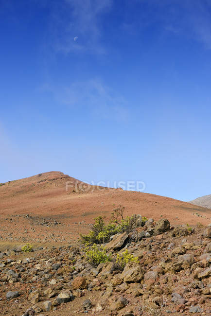 США, Гаваї, Мауї, Халеакала, вулканічний кратер з мізерною рослинністю — стокове фото