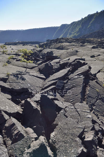 USA, Hawaii, Big Island, Volcanoes National Park, bust lava rocks of Kilauea Iki crater — Stock Photo